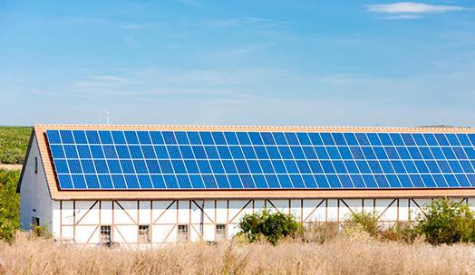 瑞峰光伏组件在摩洛哥各种光伏项目中表现优异。